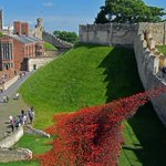 The Wave poppies at Lincoln Castle @LincsLife @LincolnCastle @LincsCathedral @BBCRadioLincs @vouchaman #LincsConnect https://t.co/B8nJc9jXgr