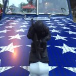 The names of 6,864 fallen service members since 9/11 are on this car & a new wall in Long Beach. @NBCLA #MemorialDay https://t.co/PFOtfu6VEk