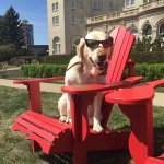 Mondays are always better when you take some time to relax with a #RedChairMoment. https://t.co/3TfTp5EQxI