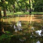UPDATE Unwetter-Alarm: Lage hat sich beruhigt. Dafür steht der Westpark unter Wasser: https://t.co/Lj7gcrAb6i https://t.co/Gpzs1aAE8e