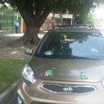 Seguridad de @ANEPElSalvador pegó sticker a vehículo estacionado frente a su sede, para culpar a manifestantes. https://t.co/VGh1KQopqT