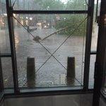 Bomen gesneuveld op van Heekplein en zuiderhagen @Gem_Enschede #noodweer https://t.co/UOfcczoRTc