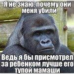 В зоопарке горилла хотела спасти трехлетнего ребёнка, упавшего к ней в вольер, а её убили. https://t.co/rf0BYyaV57