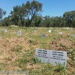 Der Friedhof der namenlosen Flüchtlinge auf Lesbos. Im Bild das Grab zweier Babies. Das bedeutet Obergrenze konkret. https://t.co/vHO8D46qJ0