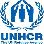 مفوضية اللاجئين: 3700 شخص فروا من #الفلوجة : https://t.co/I7vvjkwqEO - #الفلوجة https://t.co/kTWO0mqzZy