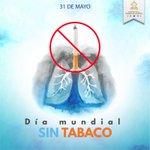 El tabaco mata cada año a unas 6 millones de personas. ¡Cuidese! Por una #HondurasSinTabaco #DiaMundialSinTabaco https://t.co/ZTEDeZg8mr