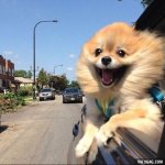 Me on my way to make bad decisions https://t.co/IH7VZ4arzN