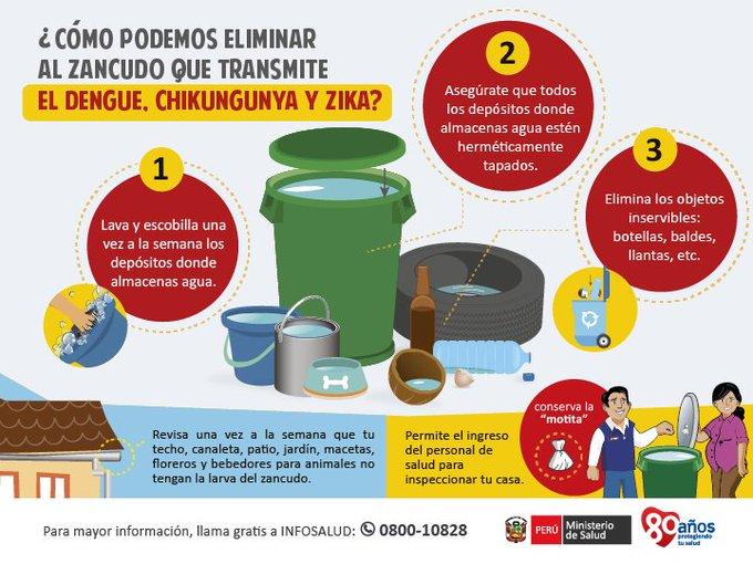 Para eliminar el zancudo del dengue chikungunya y zika for Como eliminar los mosquitos del jardin