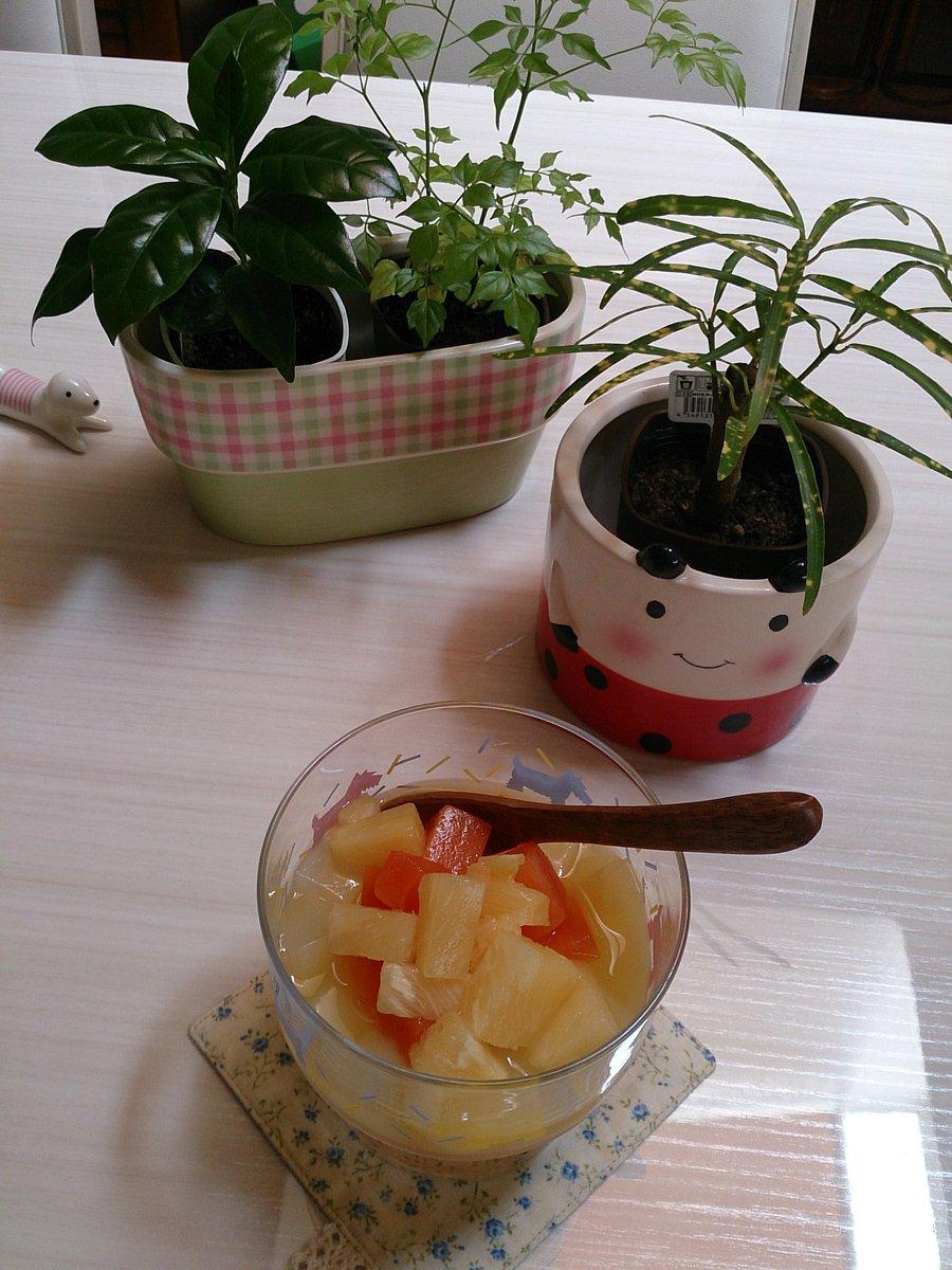 ランチtimeですよ~♪ 暑いので(;´д`)セブンで買ったトロピカルフルーツを食べてみまた!66kcal… 今日の3分cookingは… #茄子の…なんだっけ?! 夕飯にいかがでしょう~(*´∀`)♪ 午後も安全に~ https://t.co/eHXK83Gi7Y