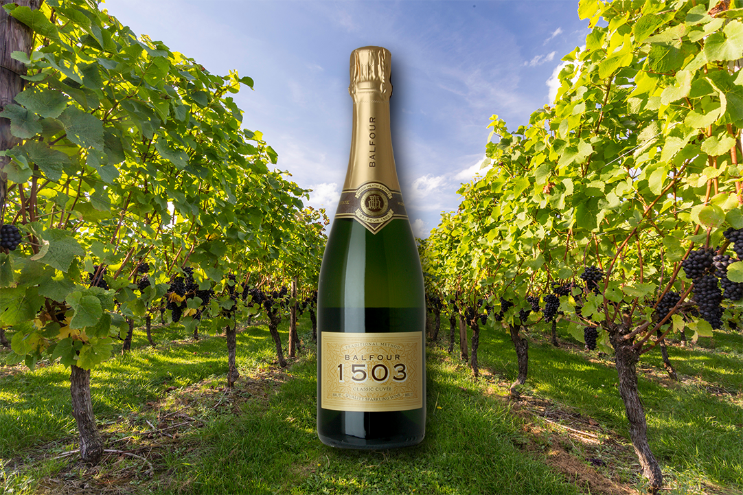 Win a bottle of @HushHeath to celebrate #EnglishWineWeek! RT and Enter here: https://t.co/z2ntY46upK #freebiefriday https://t.co/KtvnzT73Nw