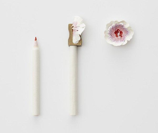 Stunning Pencil Shavings Becoming Tiny Technicolor Flowers. https://t.co/com9btbspu https://t.co/iacTA2EKFm