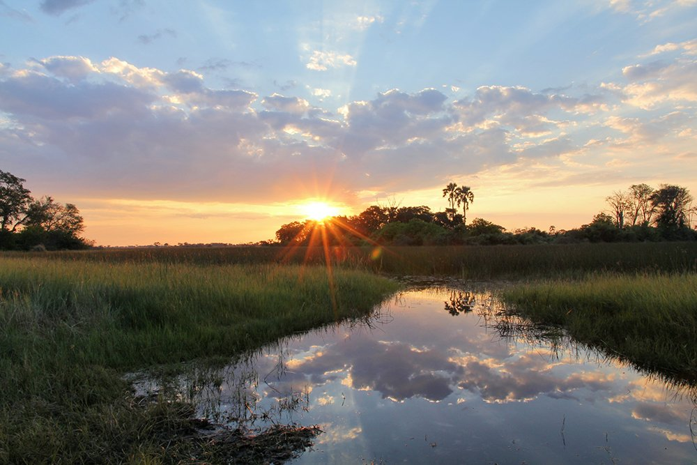 Plan your most memorable safari in Bostwana says @travelleisure »