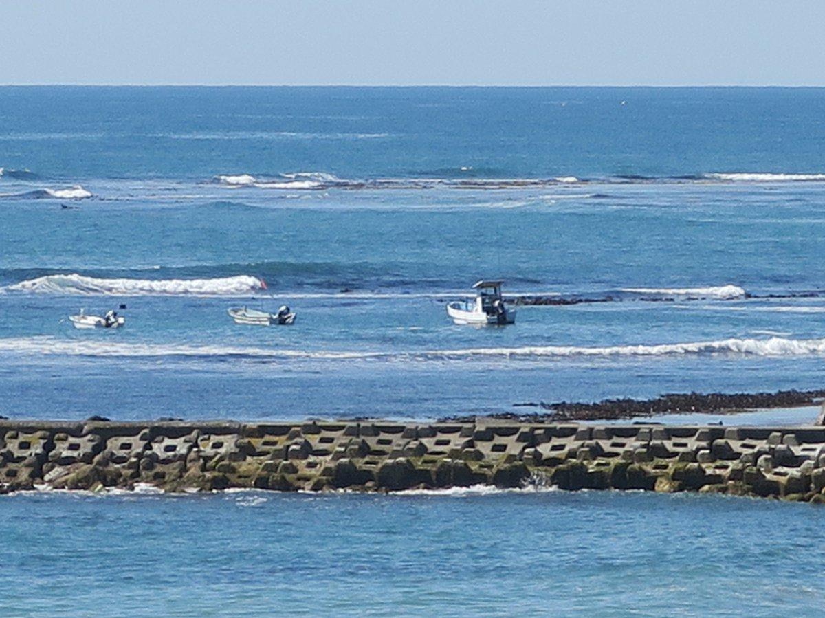 水木浜のあわび漁が解禁となり、船が出ています♪  はぎ屋旅館の夏季限定宿泊プラン 「石決明(せっけつめい)」も近日販売開始予定です! https://t.co/4uLfFVRDiY