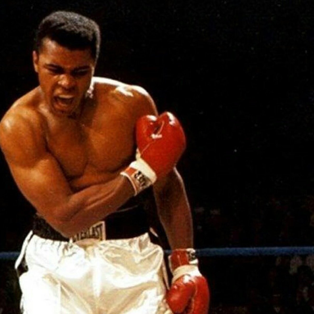 """Float like a butterfly, sting like a bee"" #RIPMuhammadAli https://t.co/pi0hwn8r8e"