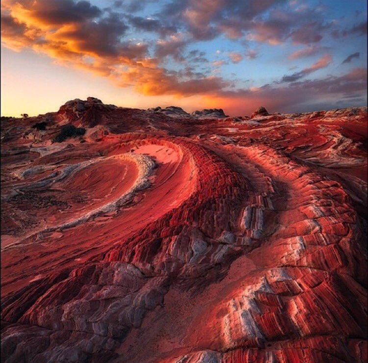 Red Dragon | Photography by ©Zack Schnepf https://t.co/w6yu7LfwWv