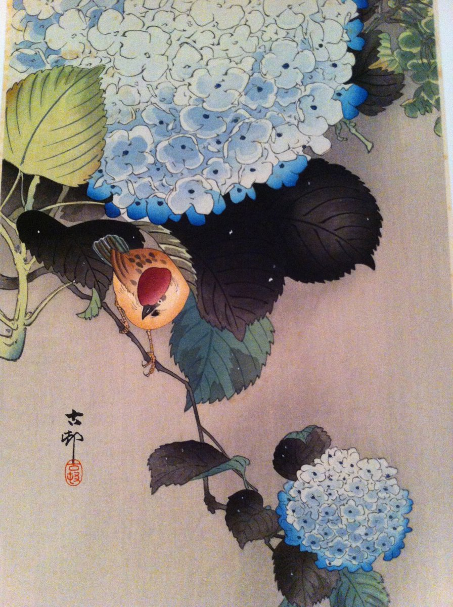 """Wordlessly playing a single bird in the blossoms""  Santoka Taneda (image: Koson Ohara) https://t.co/qfuN1p8kDE"