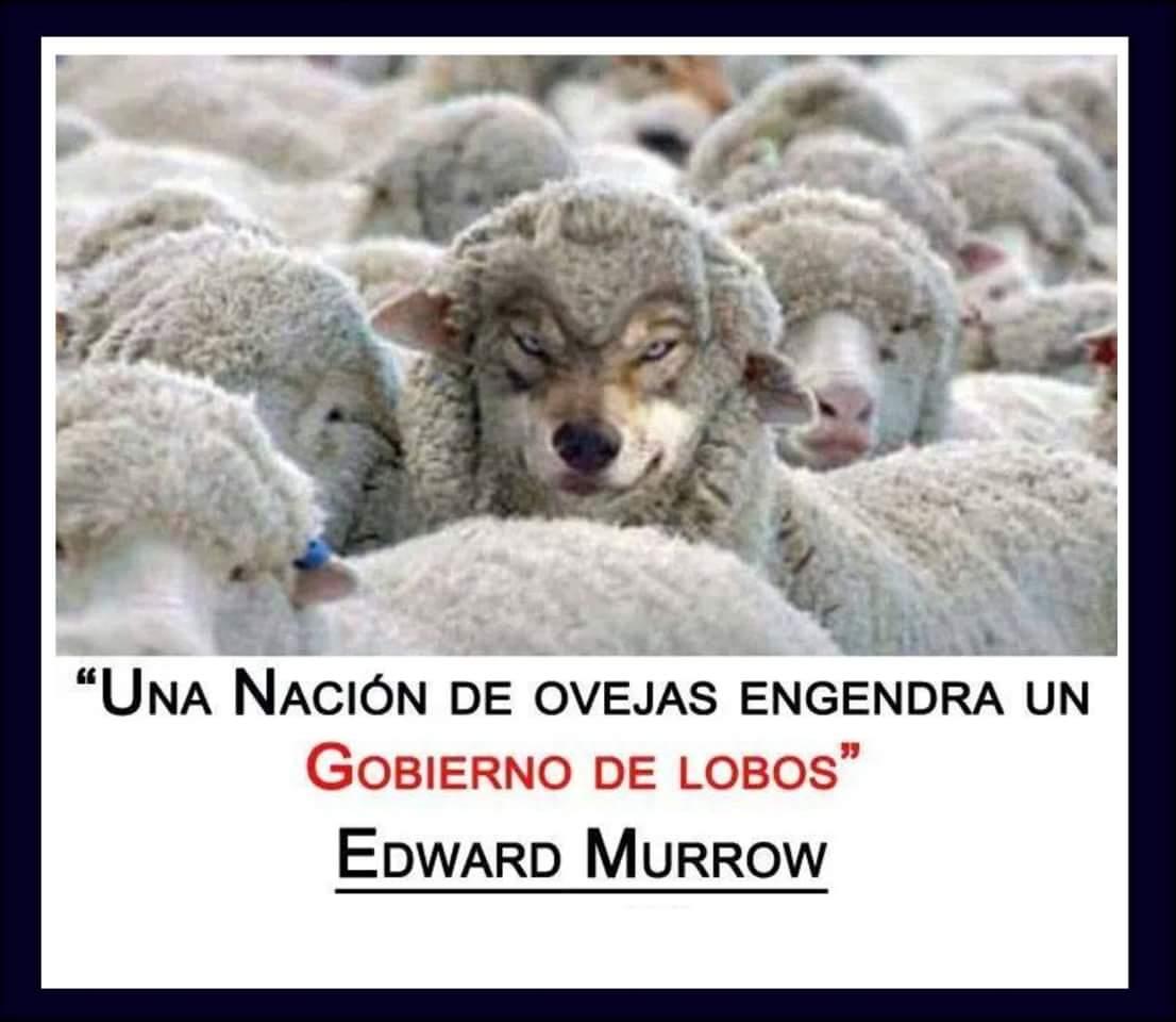 Una nación de ovejas engendra un gobierno de lobos https://t.co/ZrYe0fq4Hv