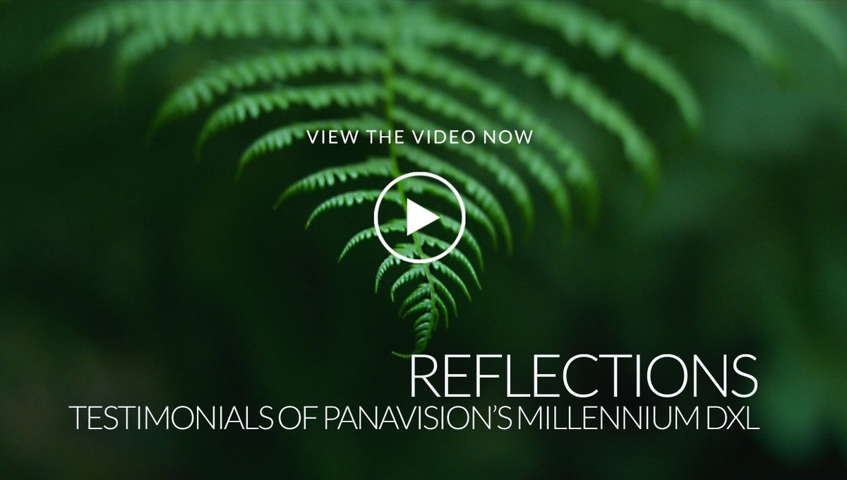 Cinematographers talk about their experiences with the Panavision Millennium #DXL camera. https://t.co/q5vH95d5Cw https://t.co/YsSVbsbKCI