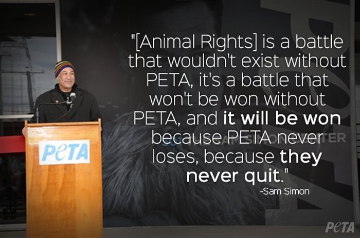RT @peta: Remembering Sam Simon on his birthday today ❤️ We still miss you & won't stop working for you. https://t.co/rVQo4tNvvR