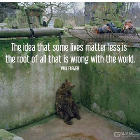 """""""The idea that some lives matter less is the root of all that is wrong with the world."""" - Paul Farmer #AnimalRights https://t.co/CSTDG6stWr"""