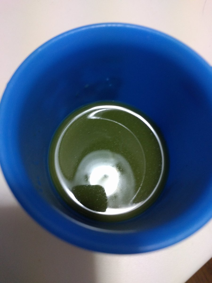 フルーツ青汁飲んでみました+゜  野菜の苦手な私にとっては、キツかった… けど、頑張って飲み干した*プハーッッツ  青汁飲んだことないけどそこまで苦くない  #フルーツ青汁 https://t.co/oWz2Tq4QK8