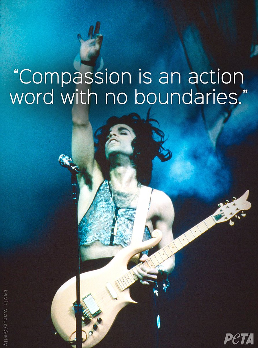 RT @peta: #TuesdayMotivation on #PrinceDay ???? https://t.co/YmYBzVdH6c