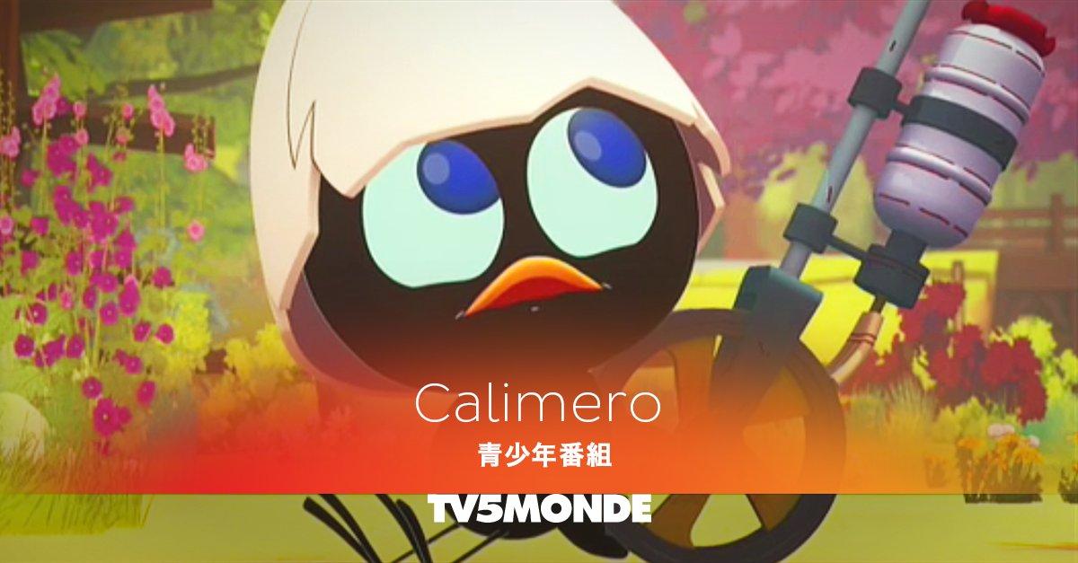 人気アニメ『カリメロ』が月曜~金曜のお昼にTV5MONDE Pacifiqueで放送中!ぜひご覧ください!😗 放送時間: