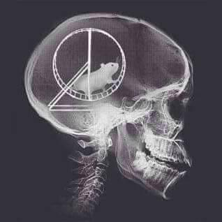 @ndrwicke @EtonOldBoys X-Ray of a Sun reader ;-) https://t.co/QU8FmLKjHm