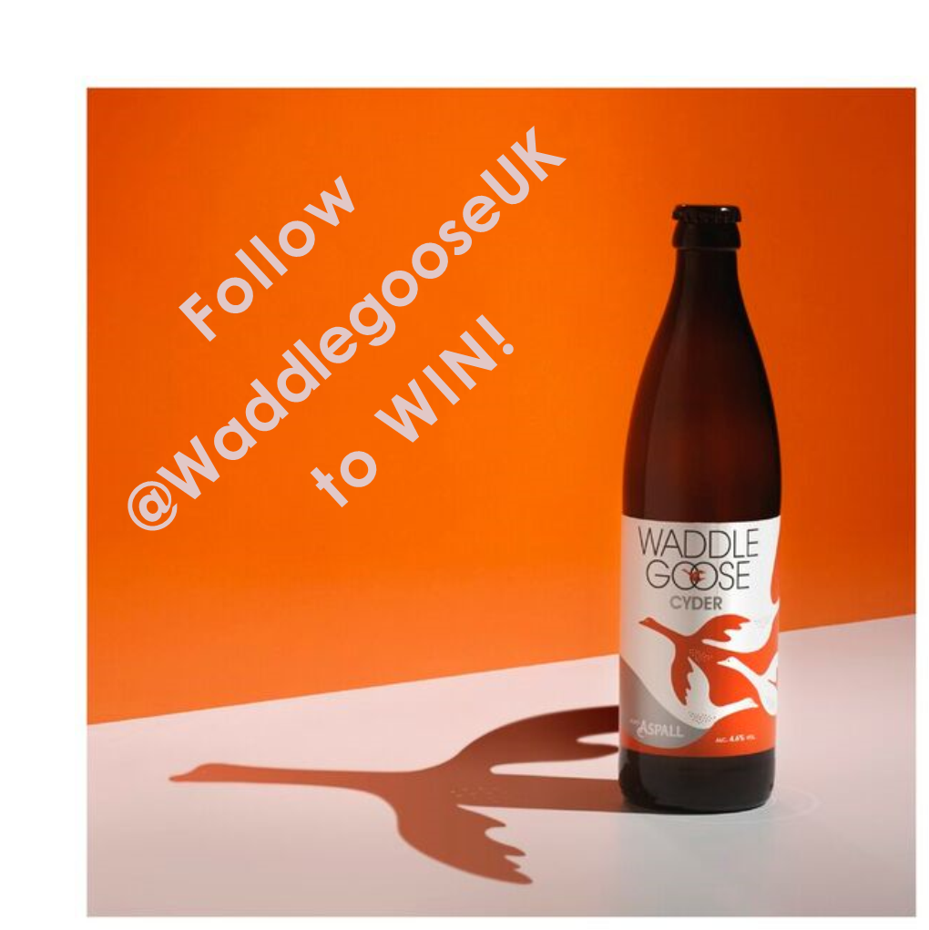 #GoosyGiveaway time! RT this & follow @WaddlegooseUK and you could win a case of cyder! Ends 22nd June. Good luck! https://t.co/NEX9hWCoic