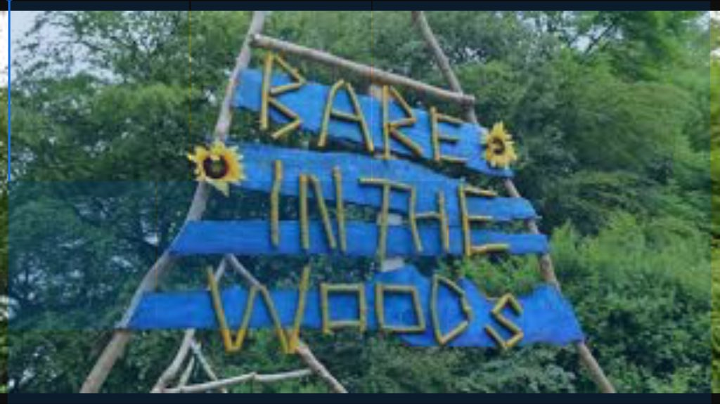 Last tickets for @bareinthewoods for sale here today! https://t.co/yXTFBH5AeM