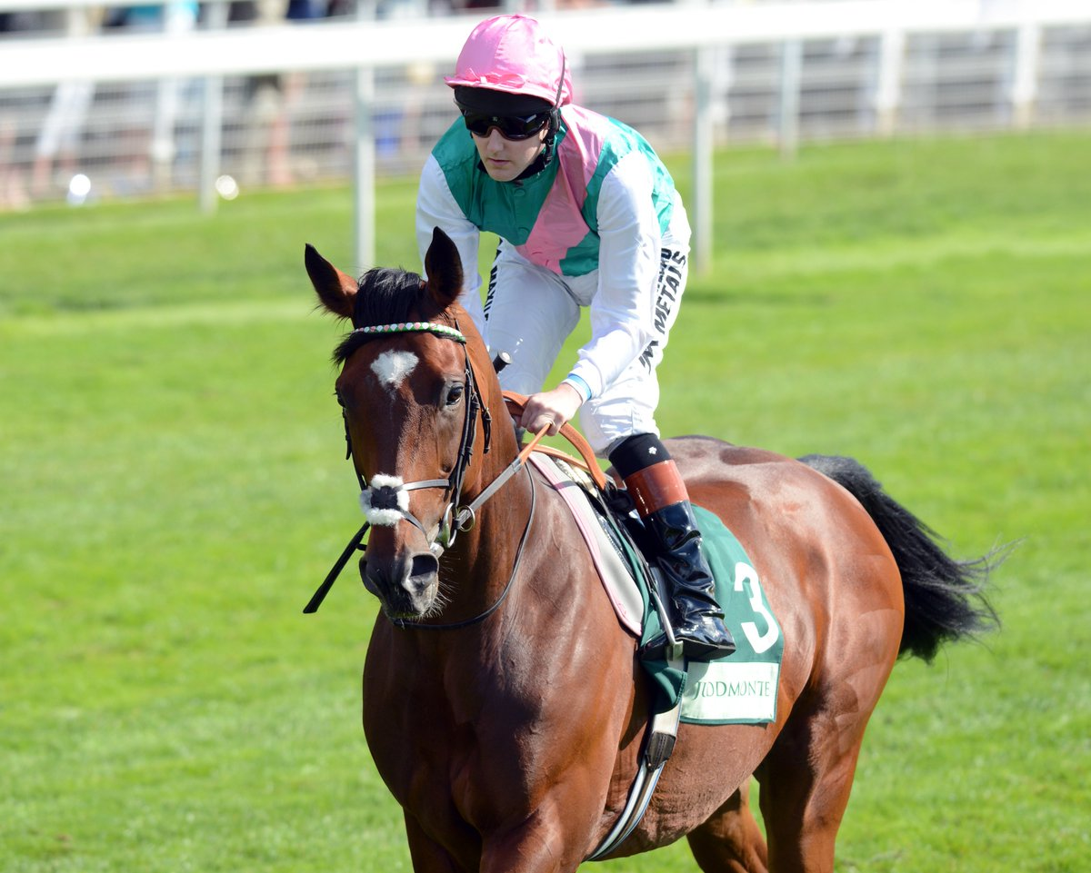 News: The Frankel filly Fair Eva has been given a @Timeform Rating of 95P after her impressive debut win at Haydock. https://t.co/JBEc6A75fp