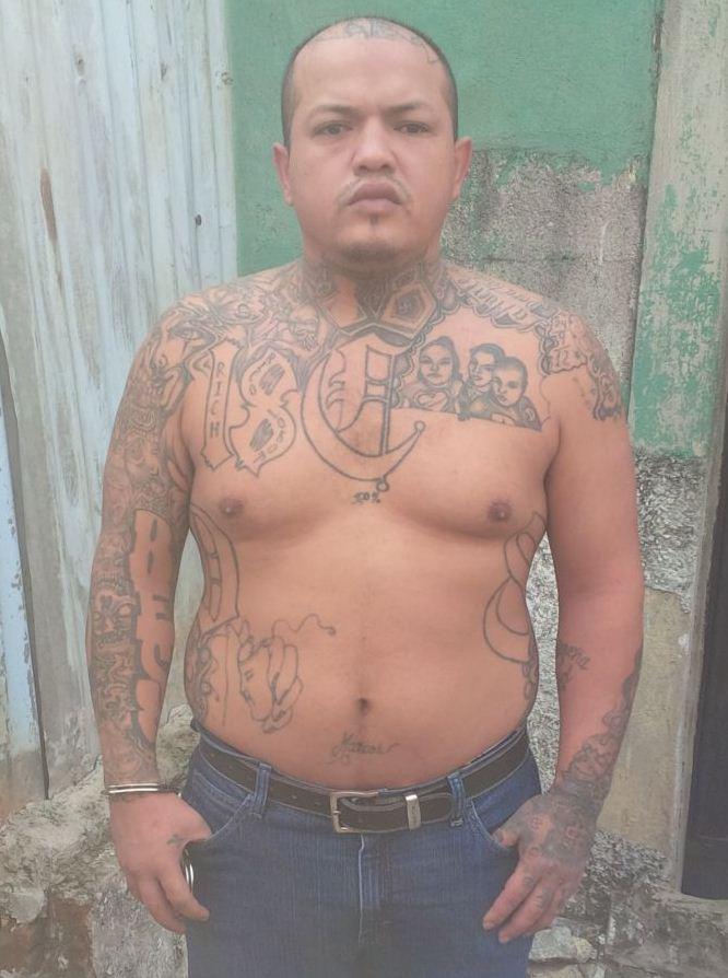 operaciónhalcón realiza la captura de marcos estrada \