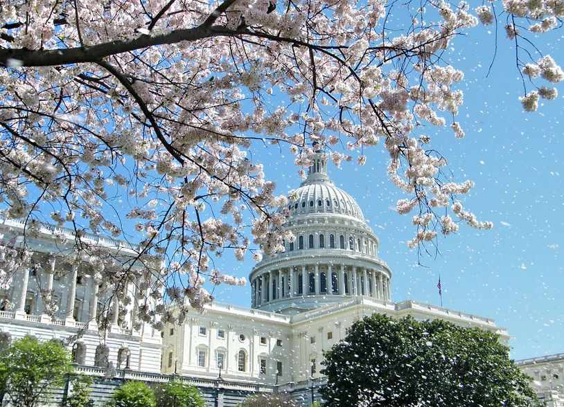 Enjoyed #IABC16? Save the date for #IABC17 in Washington, D.C. 11-14, June 2017 https://t.co/fnhNe2iWsf https://t.co/11zMIcr11o