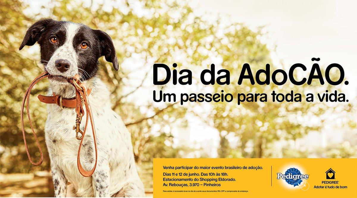 AdoCão, da @PedigreeAdotar, maior evento de adoção de cães do país, acontece neste final de semana em São Paulo. https://t.co/Wnigc016mV