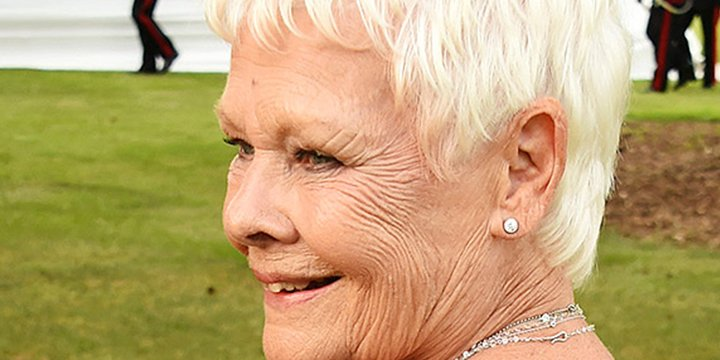 Judi Dench wears crystal 007 body art (for the third time!) to James Bond theme gala