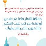 صدقة الفطر صاعا من شعير أو صاعا من تمر على الصغير والكبير والحر والمملوك #تويت_حديث #رمضان https://t.co/2YTSIhsXKu