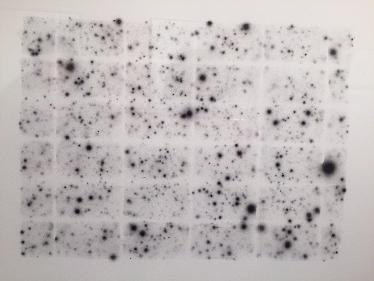 【衝撃】トンキン終了…奇形生物の発見が相次ぐ「放射性物質汚染の影響か」 [無断転載禁止]©2ch.net [624317166]YouTube動画>4本 ->画像>67枚