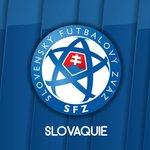 RT si vous soutenez la Slovaquie ! #SVK https://t.co/AcT2uTq4KN