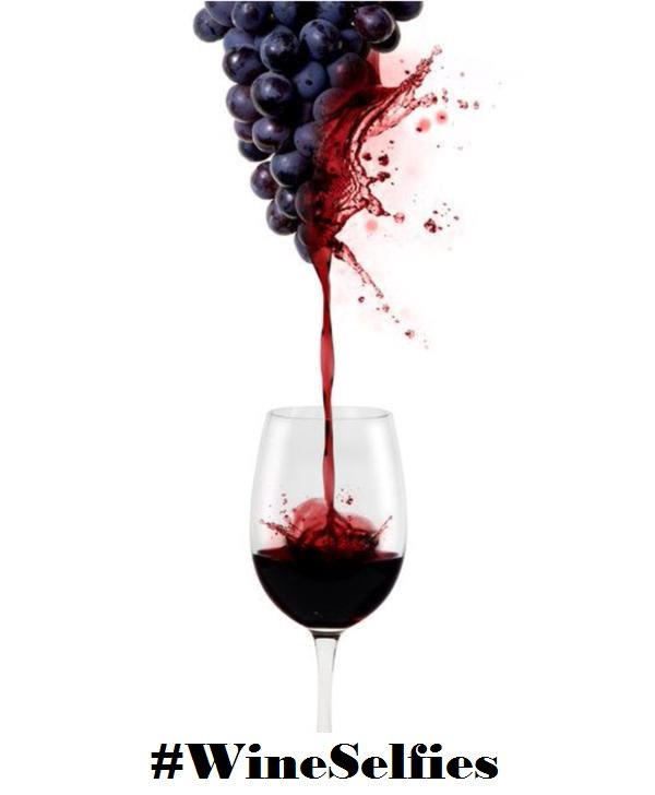 test Twitter Media - Keep pouring that #wine #winelovers https://t.co/bVu6a5ena3