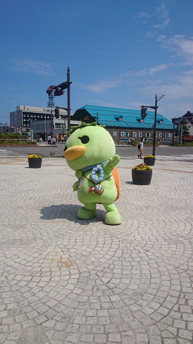 運がっぱちゃんにくっついて、9歳児と小樽運河をお散歩 https://t.co/czWxYT1oSG