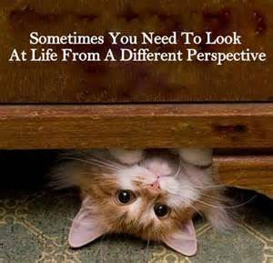If you don't like what you see, try looking from a different position. https://t.co/hC9R6P7Aqz