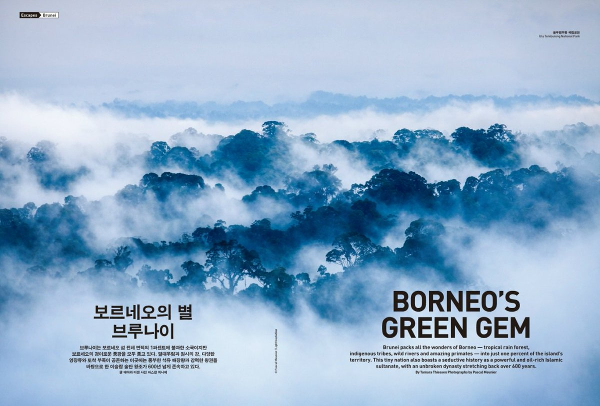 [Escapes │ Brunei] Borneo's green gem. More about this feature at  /JN
