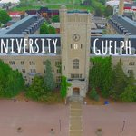 In case you needed a reminder of how awesome @uofg is! #Drone video by alum @Emil_Smolders https://t.co/Ff7eW4ZkVk https://t.co/bVdwY6Iwlu