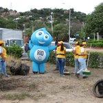 Continuamos con el compromiso de generar empleo y mejorar el embellecimiento paisajístico en los parques de Cúcuta. https://t.co/VdbsSw6dAp