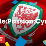 These are OUR days. OUR time to shine. We march on.  Bendigedig. BENDIGEDIG.  #WAL #Euro2016 #WALNIR https://t.co/2d8BJkrYGs