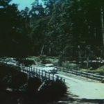 A Gateway to Charm – Northwest Tasmania (1955) - Tasmanian Geographic | by Special Arrangem… https://t.co/FX0SVmGMNz https://t.co/O1NDclevo1