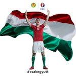 Meccsnap   |   Matchday #csakegyutt #HUNBEL #Euro2016 https://t.co/LwXxUZYB1M