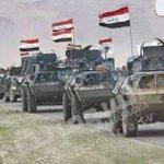 أزف البشرى لجميع العراقيين  بتحرير الفلوجة بالكامل و نهائيا  من الإرهابيين فالشكر لله  #البصرة_مدينة_العطاء https://t.co/mcR7TrwaHz