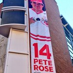 #Reds continue to honor Pete Rose this weekend. Retiring his number 14 @FOX19 https://t.co/dNlI6FJGLe