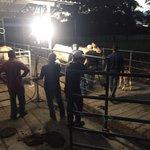 #CultivandoPatria desde Barinas, con la experiencia productiva de la familia Silva Castillo en la ganadería lechera https://t.co/8YfL0OcayV